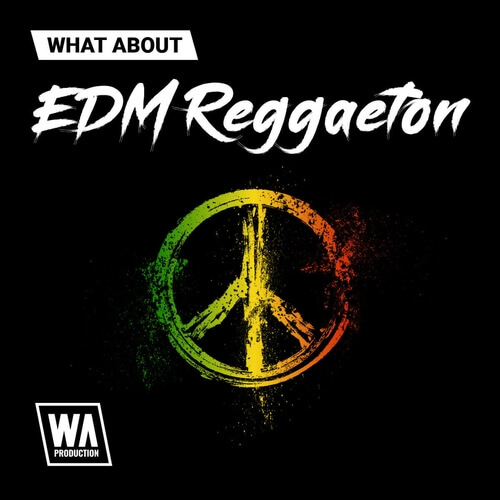 What About: EDM Reggaeton