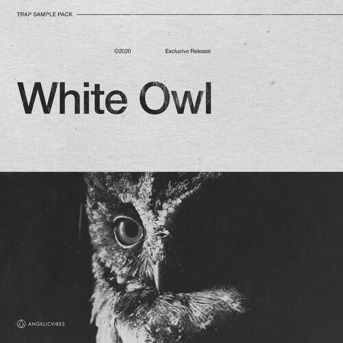 White Owl - Drum Kit