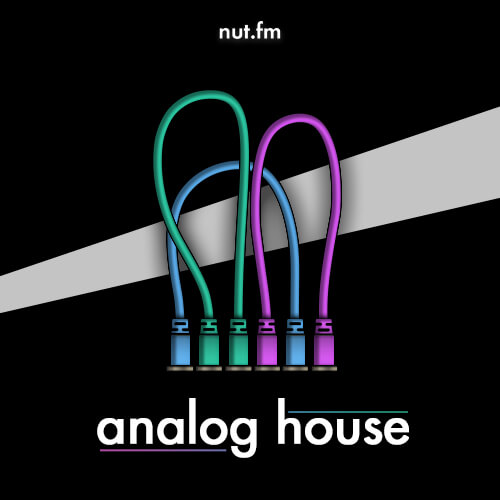 analog house