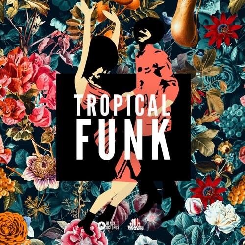 Tropical Funk by Basement Freaks