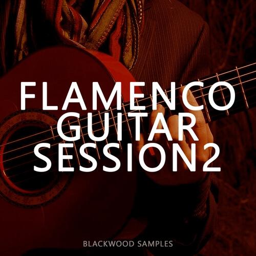 Flamenco Guitar Session 2