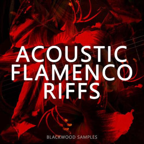 Acoustic Flamenco Riffs