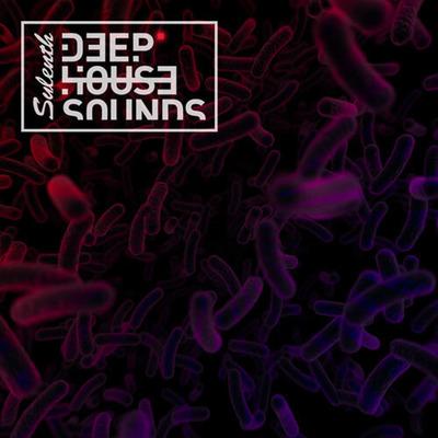 Sylenth Deep House Sounds