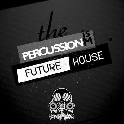 Percussionism: Future House