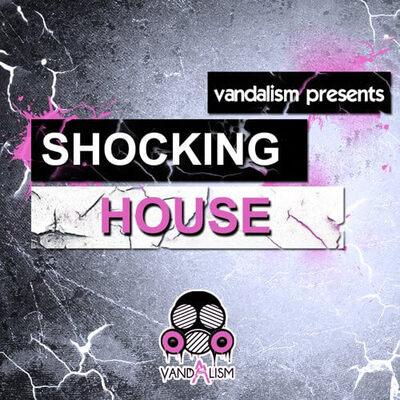 Shocking House