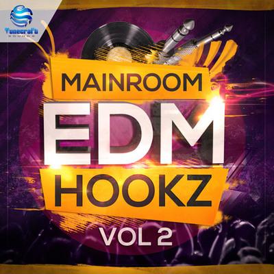 Tunecraft Mainroom EDM Hookz Vol.2
