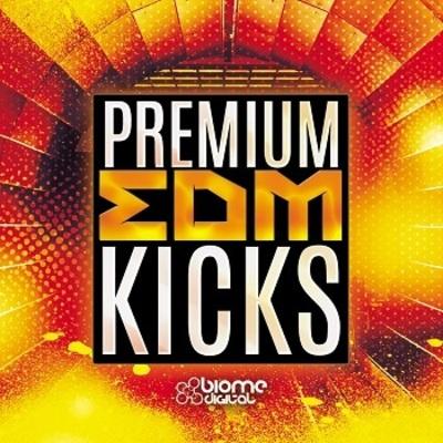 Premium EDM Kicks - WAV Edition