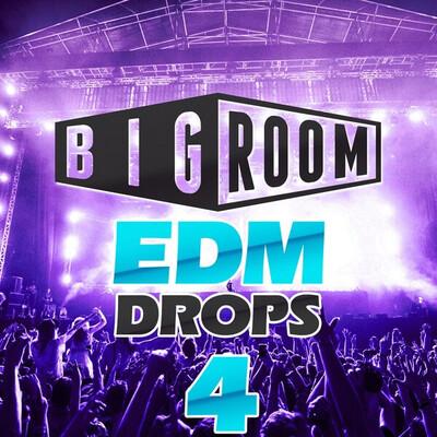 Big Room EDM Drops 4