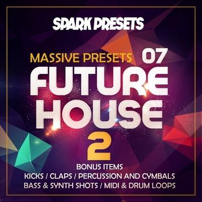 Future House Vol 2 – NI Massive Presets