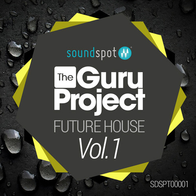 The Guru Project - Future House Vol 1