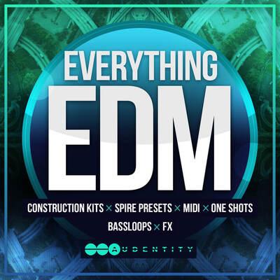 Audentity- Everything EDM