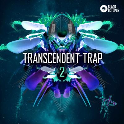 Transcendent Trap 2 - By Paradigm Theorem