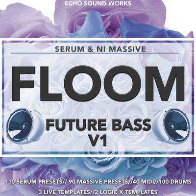 Echo Sound Works Floom V.1