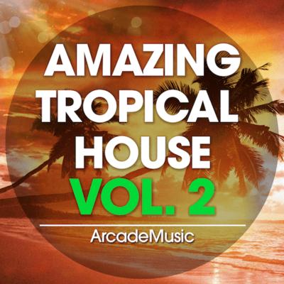 Amazing Tropical House Vol. 2