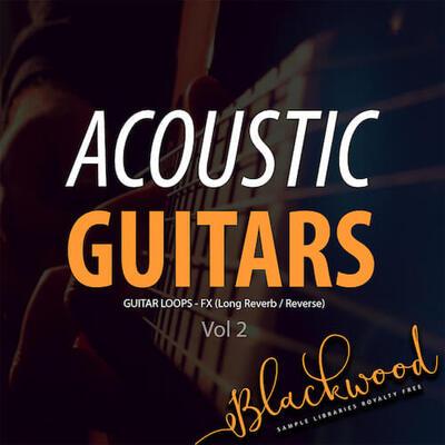 Acoustic Guitars 2