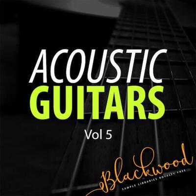Acoustic Guitars 5