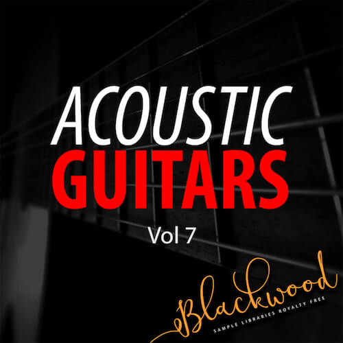 Acoustic Guitars 7