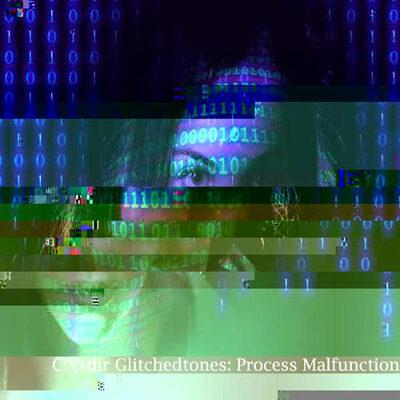 Process Malfunction