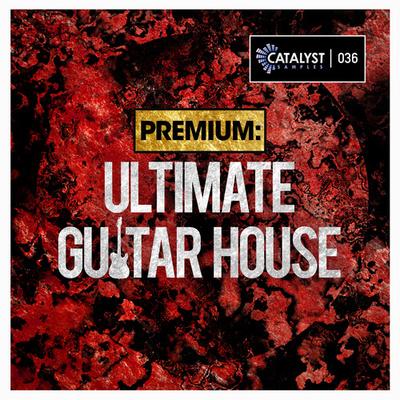 Premium: Ultimate Guitar House