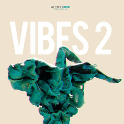 Vibes Vol.2
