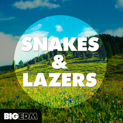 Snakes & Lazers