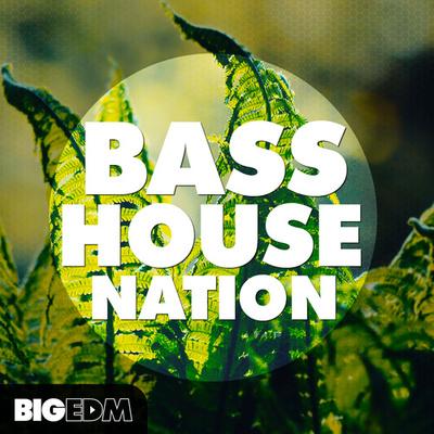 BASS House Nation