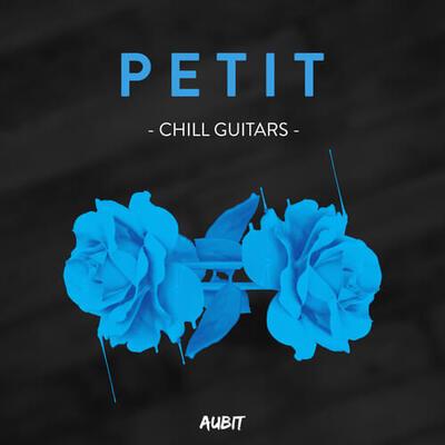 Petit Guitars