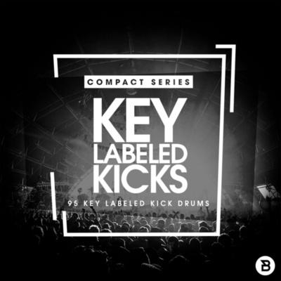 Compact Series: Key Labeled Kicks