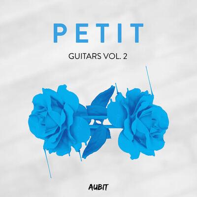 Petit Guitars Vol. 2