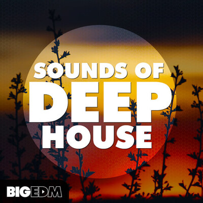 Sounds Of Deep House