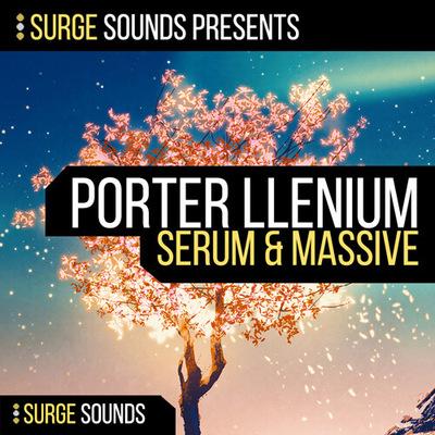Porter llenium