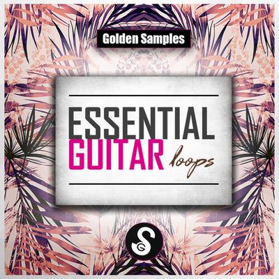 Essential Guitar Loops Vol.1