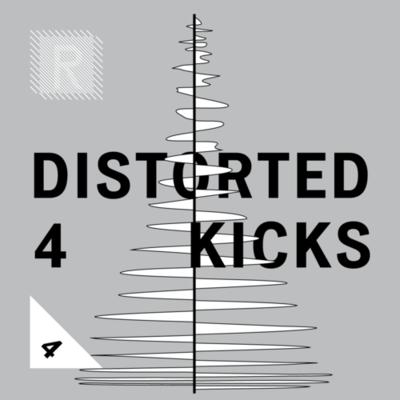 Riemann Distorted Kickdrums 4