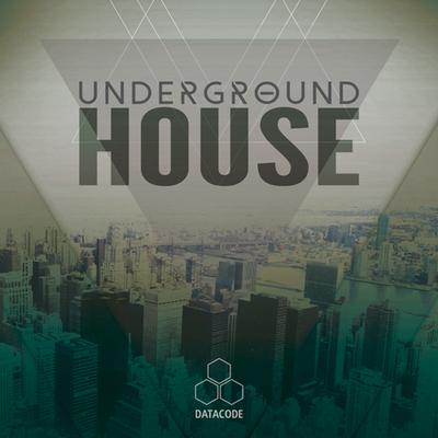 FOCUS: Underground House