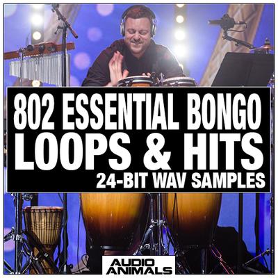 802 Essential Bongo Loops & Hits