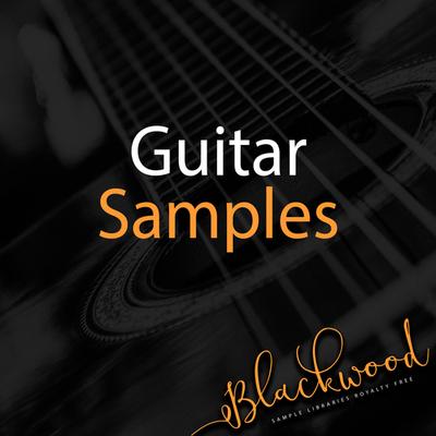 Guitar Samples