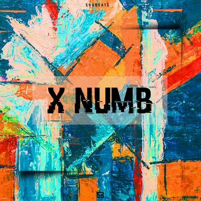 X NUMB