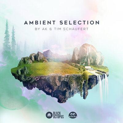 Ambient Selection by AK & Tim Schaufert