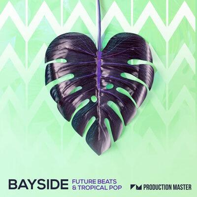 Bayside - Future Beats & Tropical Pop