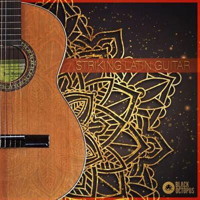 Striking Latin Guitar