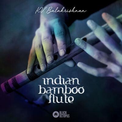 KV Balakrishnan Indian Bamboo Flute