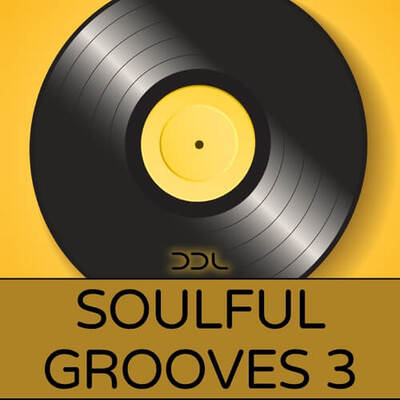 Soulful Grooves 3
