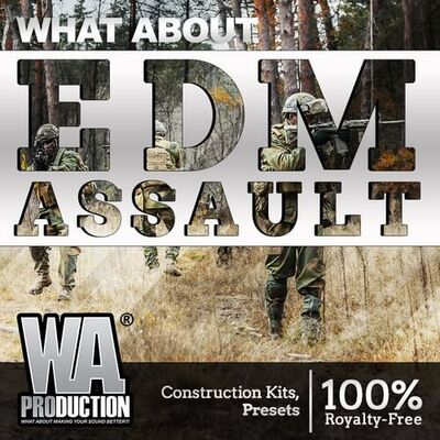 What About: EDM Assault
