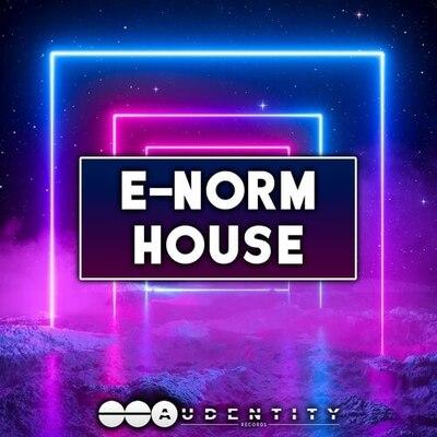 E-Norm House