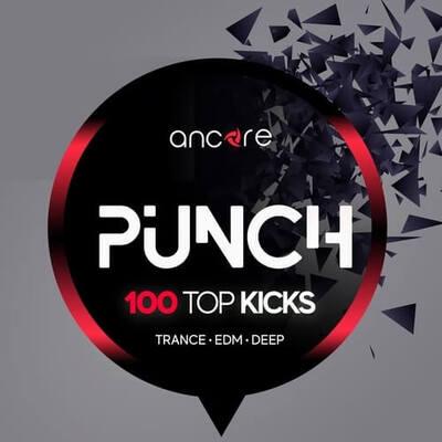 PUNCH 100 Top Kicks