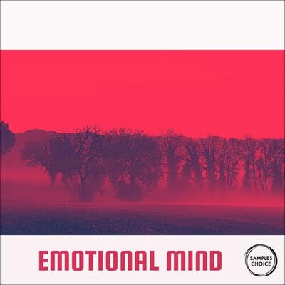 Emotional Mind