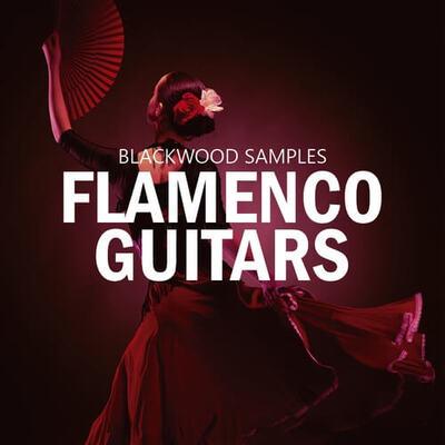 Flamenco Guitar Vol 1