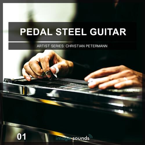 Pedal Steel Guitar 1