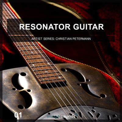 Resonator Guitar 1