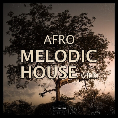 Afro Melodic Wild